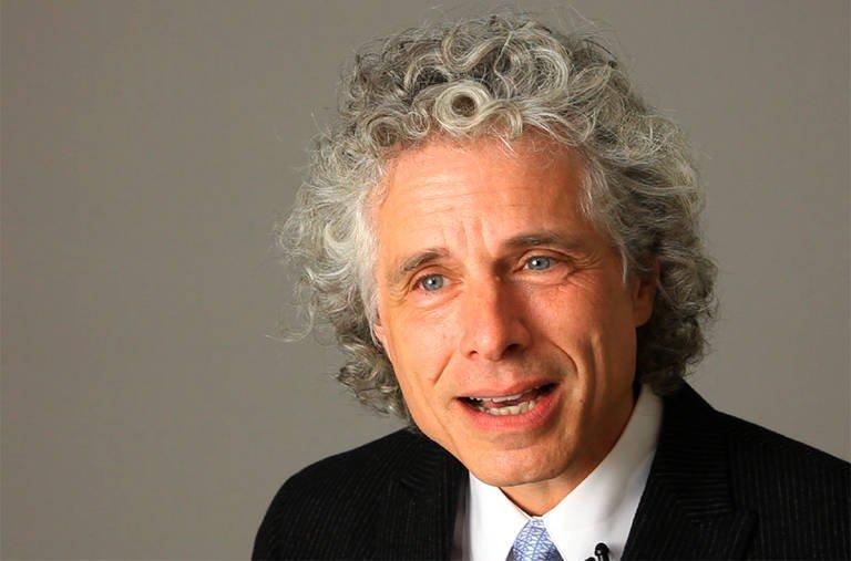 Essay on Pinker